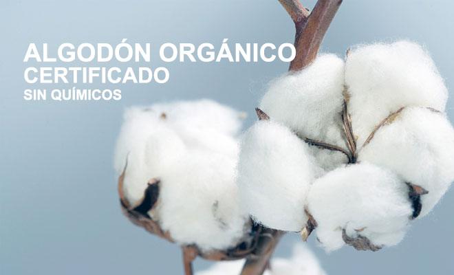 Algodón orgánico certificado sin químicos.