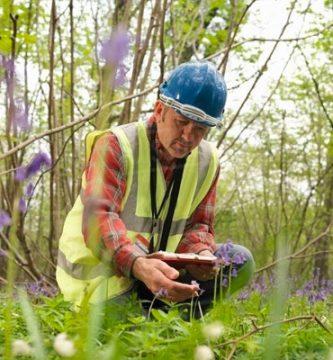 La ecología es un área de estudio multidisciplinaria que integra las ciencias tradicionales, como la biología y la química, con las ciencias sociales, para formar una comprensión profunda del medio ambiente, los animales y los ecosistemas.
