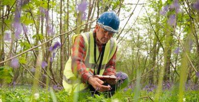 ecologista profesional